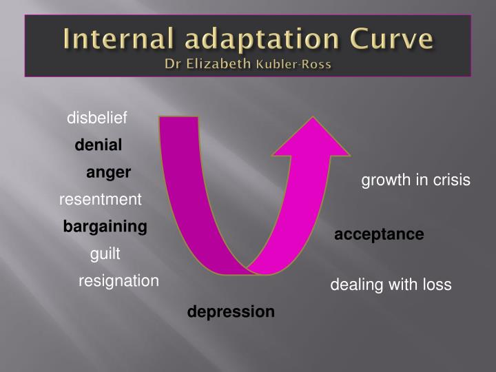 Internal adaptation Curve
