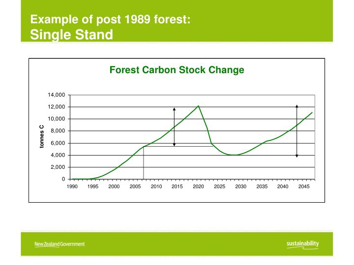 Example of post 1989 forest: