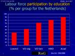 labour force participation by education per group for the netherlands