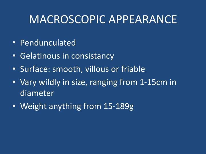 MACROSCOPIC APPEARANCE
