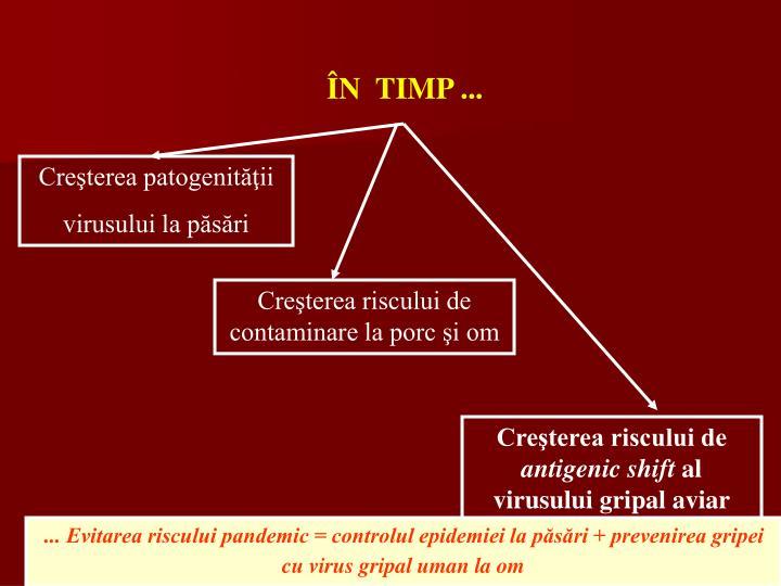 ÎN  TIMP ...