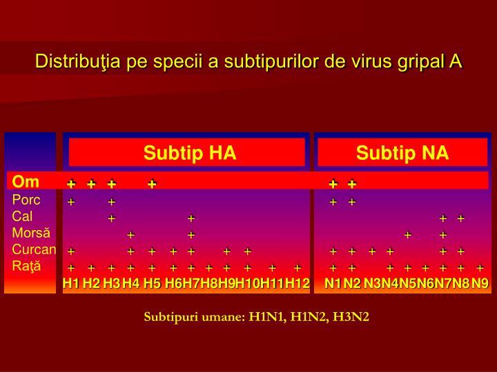 Distribuţia pe specii a subtipurilor de virus gripal A