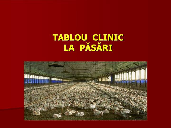 TABLOU  CLINIC