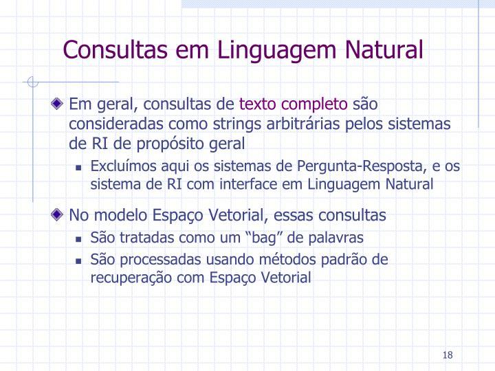 Consultas em Linguagem Natural