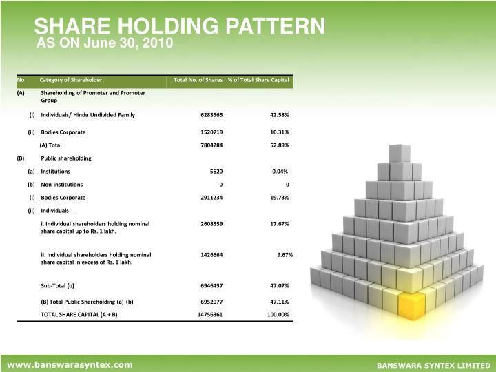 SHARE HOLDING PATTERN