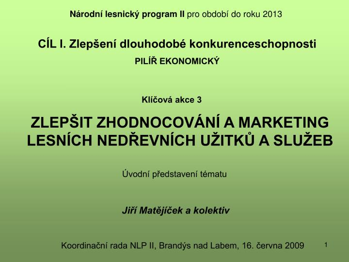 zlep it zhodnocov n a marketing lesn ch ned evn ch u itk a slu eb n.