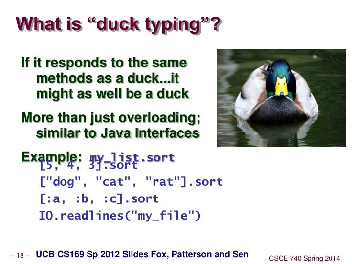 """What is """"duck typing""""?"""