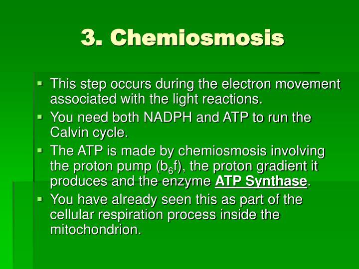 3. Chemiosmosis