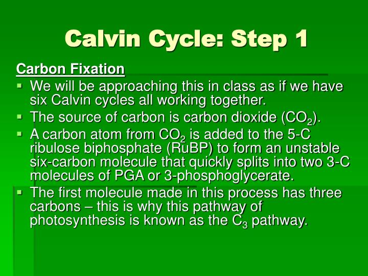 Calvin Cycle: Step 1