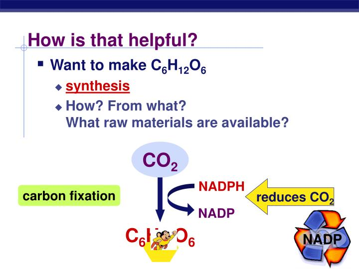 how is photosythesis helpful Photosynthesis produces glucose and oxygen these are both required by humans for the process of respiration, which is how humans make the energy required to perform all cellular activities without access to the products of photosynthesis, the human race would cease to exist photosynthesis is a.
