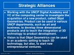 strategic alliances1