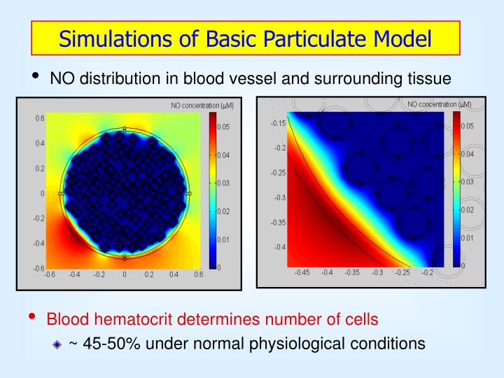 Simulations of Basic Particulate Model