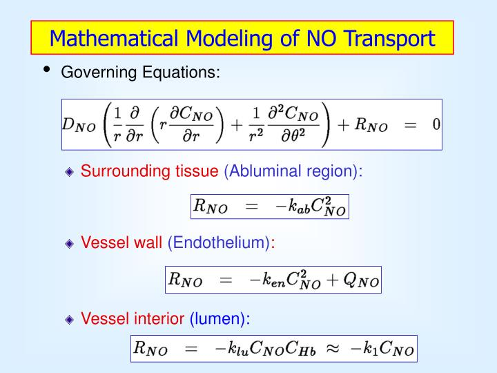 Mathematical Modeling of NO Transport