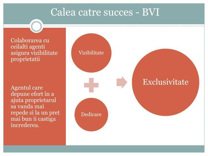 Calea catre succes - BVI