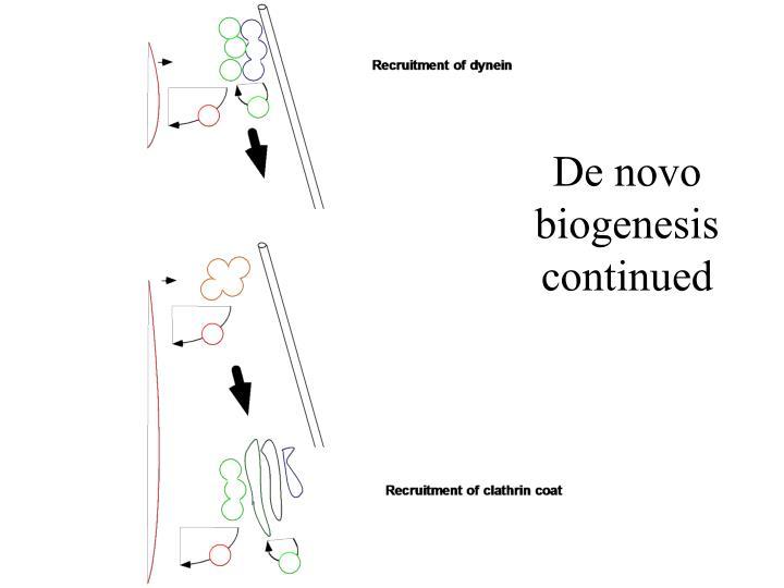 De novo biogenesis continued