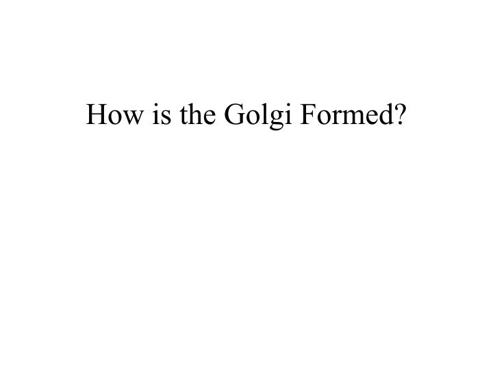 How is the Golgi Formed?