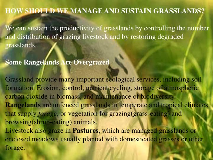 HOW SHOULD WE MANAGE AND SUSTAIN GRASSLANDS?