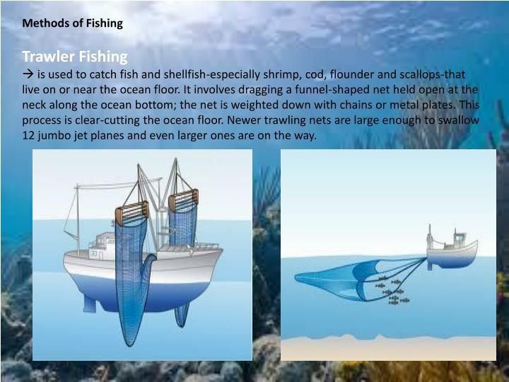 Methods of Fishing