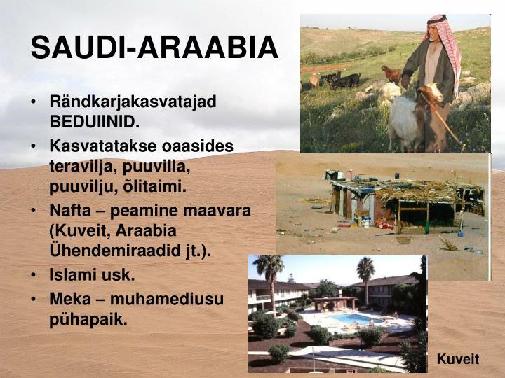 SAUDI-ARAABIA