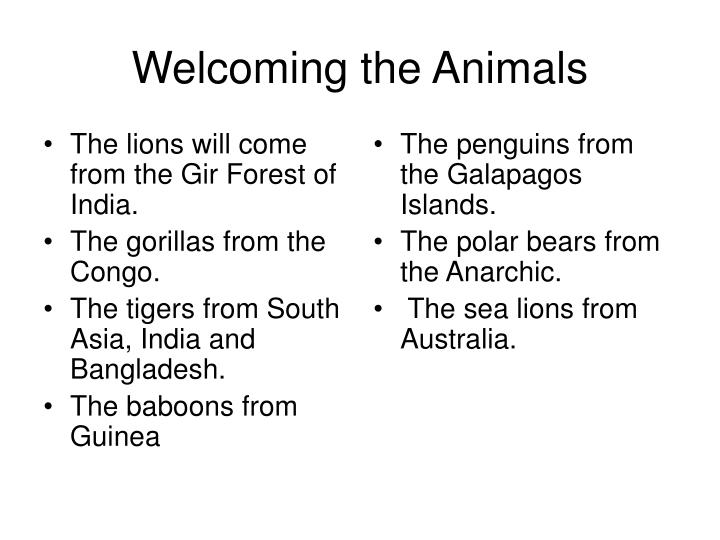 The lions will come from the Gir Forest of India.