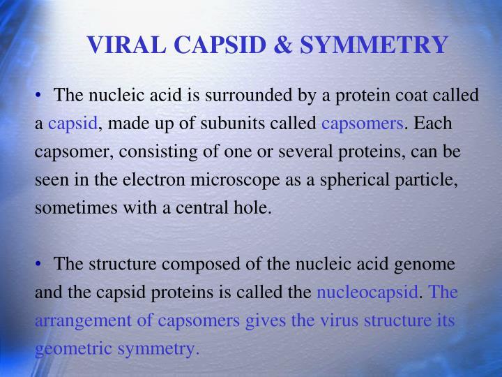 VIRAL CAPSID & SYMMETRY