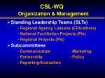 csl wq organization management