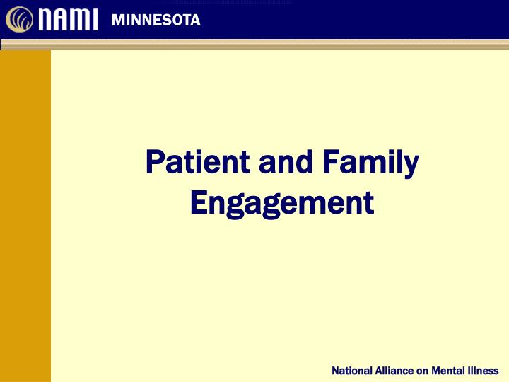 patient and family engagement n.