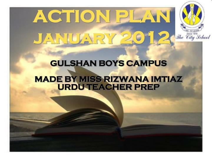 action plan january 2012 n.