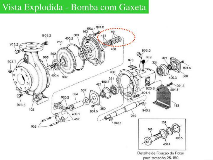 Vista Explodida - Bomba com Gaxeta
