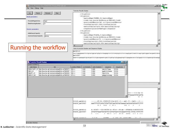 Running the workflow