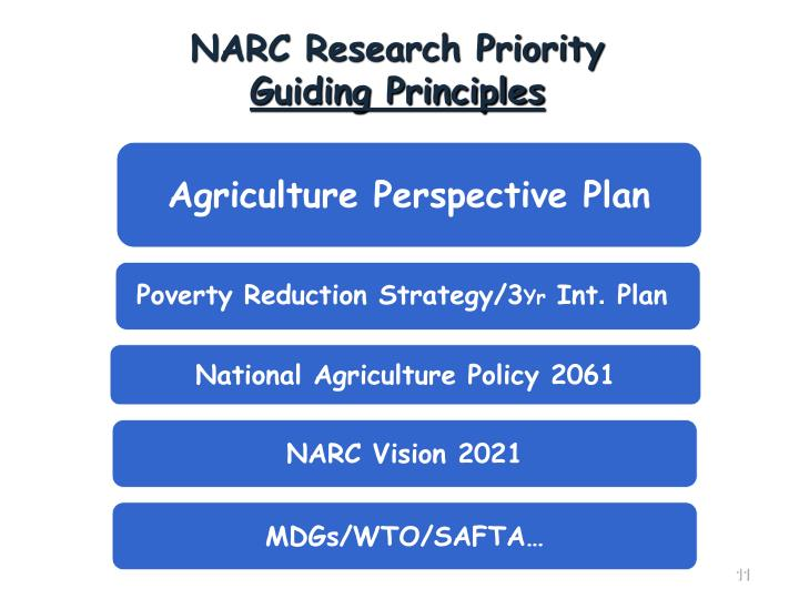 Agriculture Perspective Plan