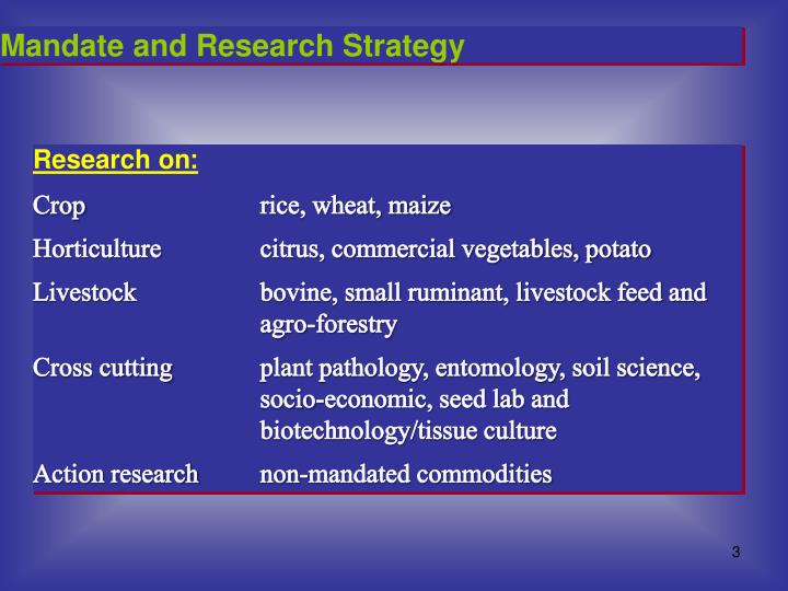 Mandate and Research Strategy