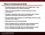 what is professional grief