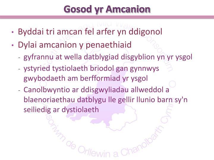 Gosod yr Amcanion