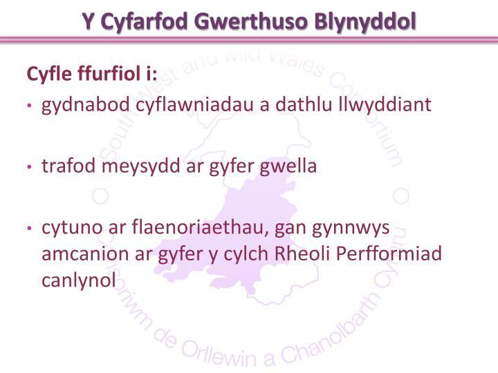 Y Cyfarfod Gwerthuso Blynyddol