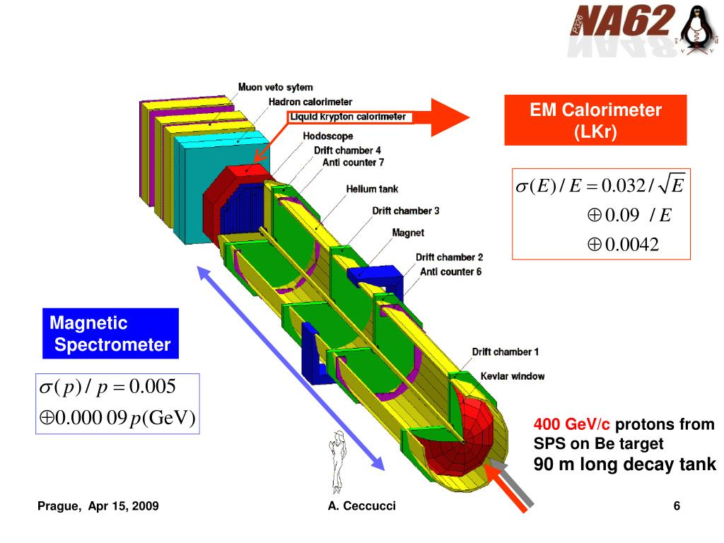 PPT - The CERN Kaon Programme: New Opportunities in Rare