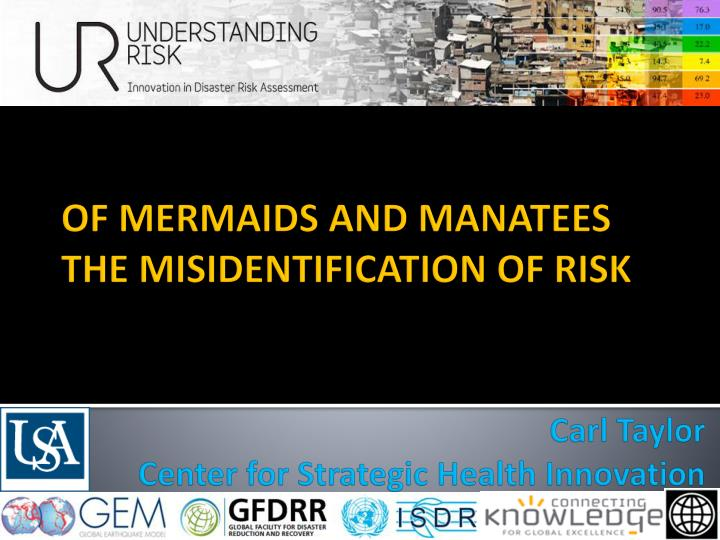 of mermaids and manatees the misidentification of risk n.