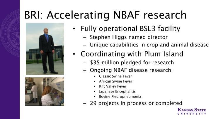 BRI: Accelerating NBAF research