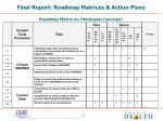 final report roadmap matrices action plans