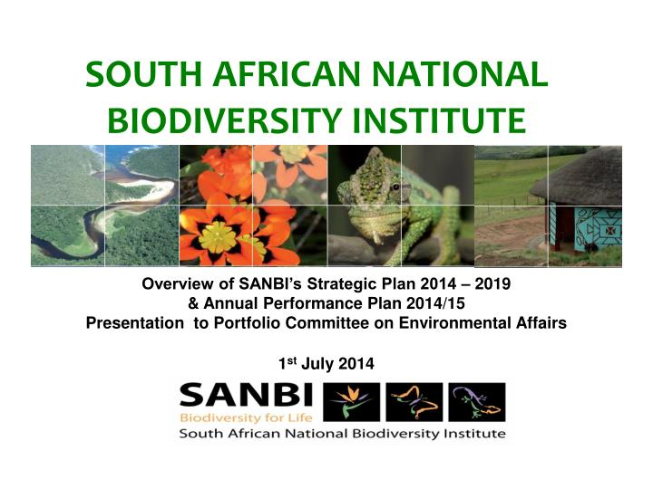 south african national biodiversity institute n.