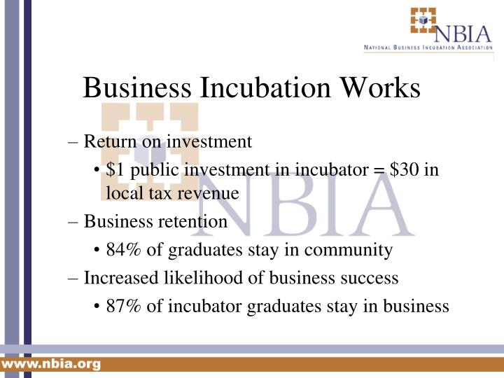 Business Incubation Works
