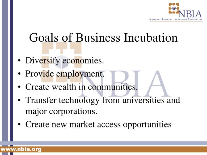 Goals of Business Incubation
