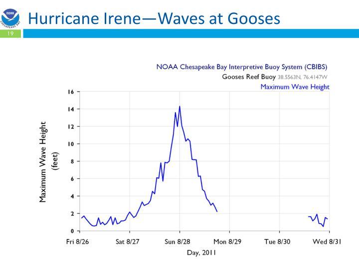 Hurricane Irene—Waves at Gooses