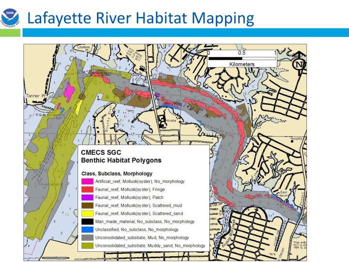 Lafayette River Habitat Mapping