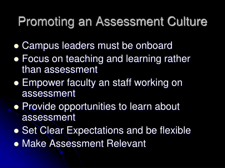 Promoting an Assessment Culture