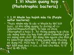 1 vi khu n quang h p phototrophic bacteria
