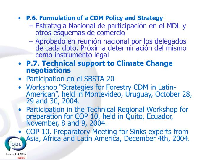 P.6. Formulation of a CDM Policy and Strategy