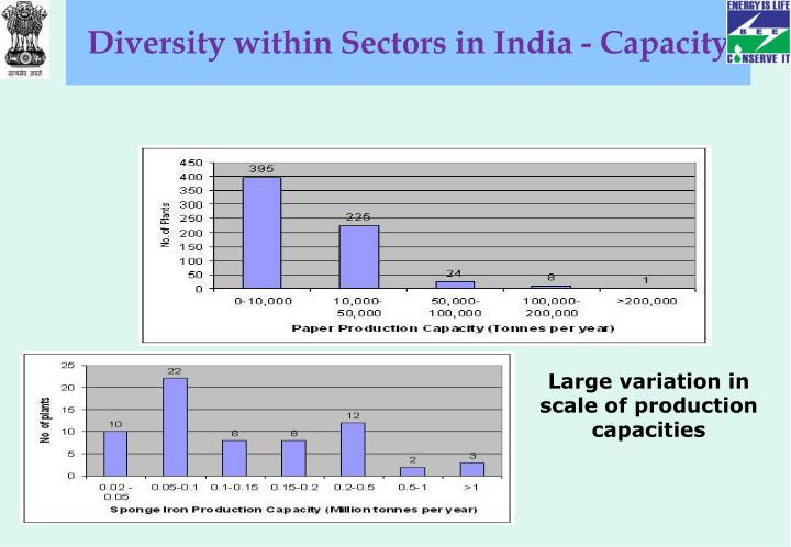 Diversity within Sectors in India - Capacity