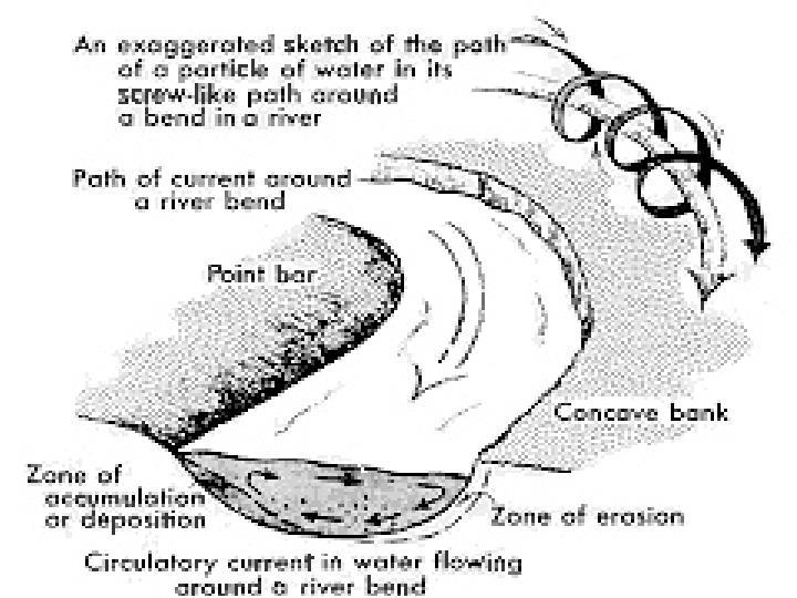 Figure 3 - Ecoulement à l'intérieur d'un méandre: à l'écoulement principal le long de la rivière se superpose un écoulement secondaire transverse aux rives: celui-ci est orienté vers l'extérieur du méandre près de la surface et en sens inverse près du fond.