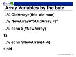 array variables by the byte
